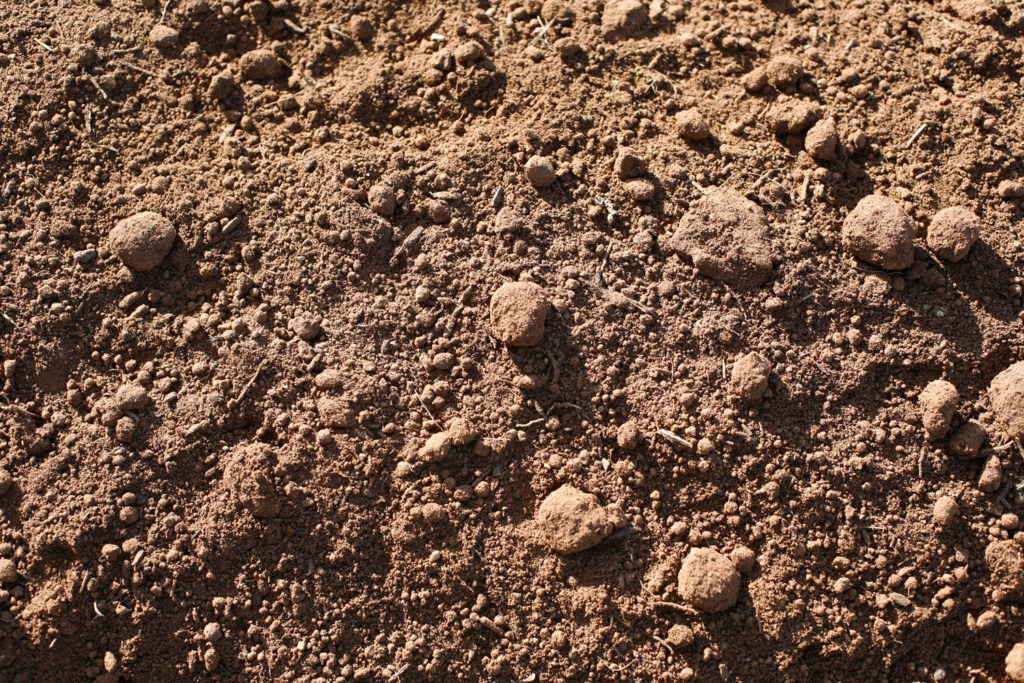 Premium-Screened-Topsoil